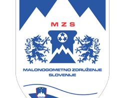 Cropped MZS - Malonogometno združenje Slovenije logotip 250x315